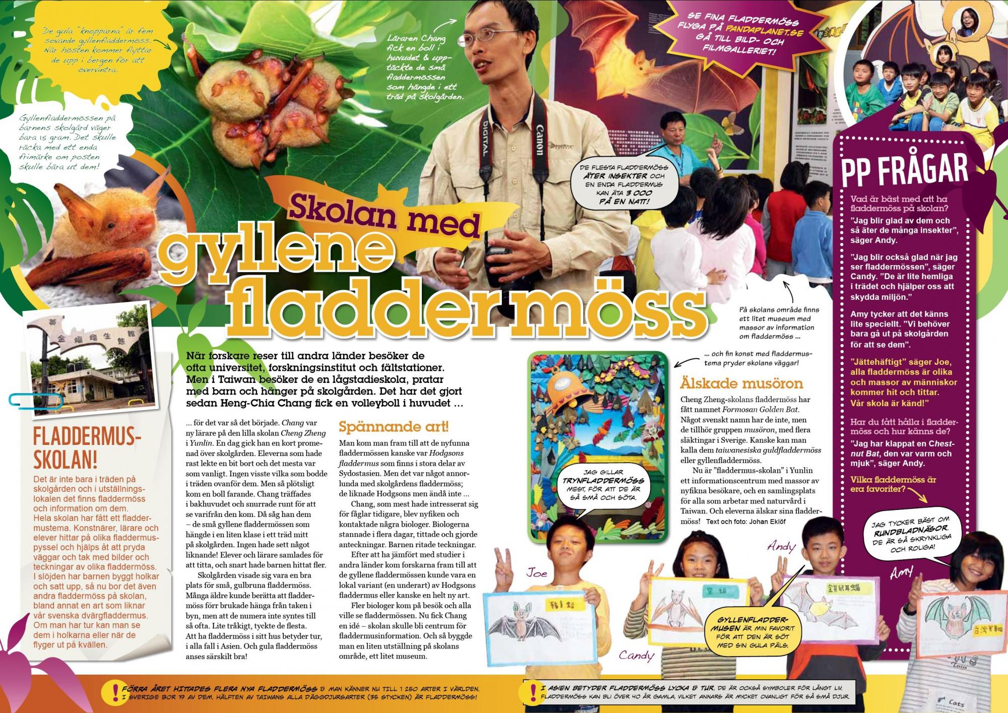 2013年2月歐洲WWF貓熊雜誌對張老師和蝙蝠館的報導